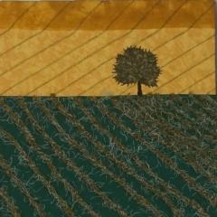 Muster der Erde_Detail