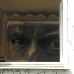 Harnoncourt durchs Fenster