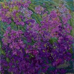Rève de violet