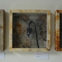 Sophie Maechler: Herbarium I-III