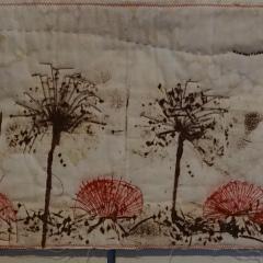 Allium-Reste vom Herbst