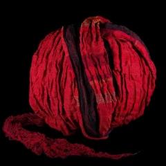 christine läubli - palla rossa, Foto, Christine Läubli
